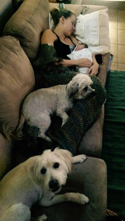 Family naptime